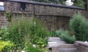 The Rossendale medicinal herb garden