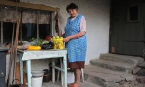 super-soup gardener